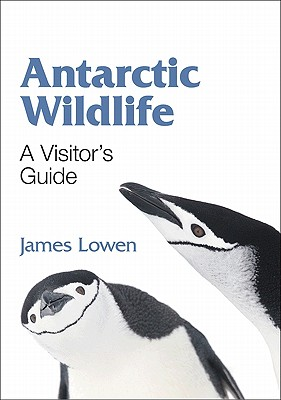 Antarctic Wildlife By Lowen, James